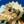 User icon s 171895 1586159162