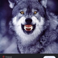 User icon m 192434 1606630721