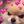 User icon s 199836 1586150451
