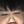 User icon s 203497 1586148915