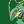 User icon s 231244 1586131363