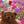 User icon s 23688 1586162466