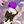 User icon s 296624 1592340278