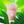 User icon s 306646 1593955848