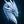 User icon s 338383 1608590325